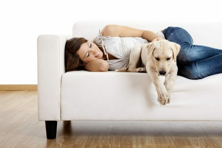 Best Furniture Fabric For Kids-Pets