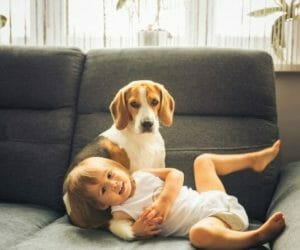 5 Most Durable Furniture Fabrics For Kids & Pets: Ultimate Guide