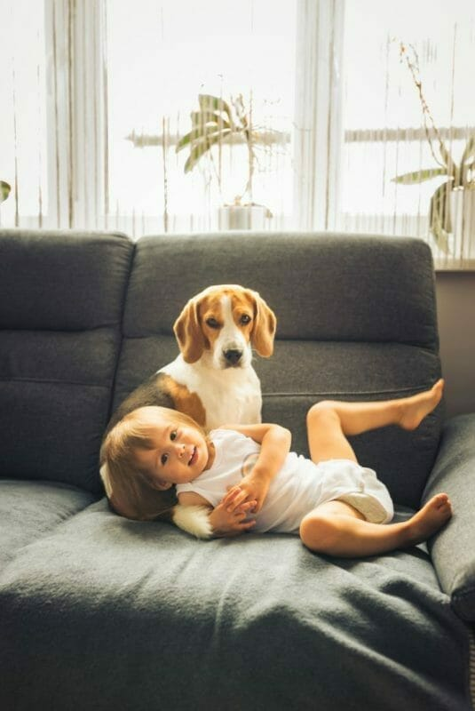 Best Furniture Fabric For Kids