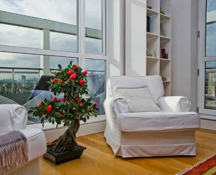 Best Japanese Bedroom Ideas - Bonsai