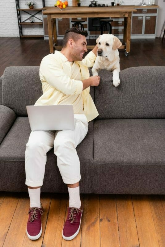 Best Leather Couch for Dog Owners and Kids
